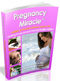 ebooks download online: Pregnancy Miracle
